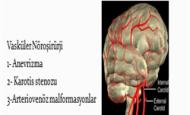 Vasküler Nöroşirürjide Gelecek