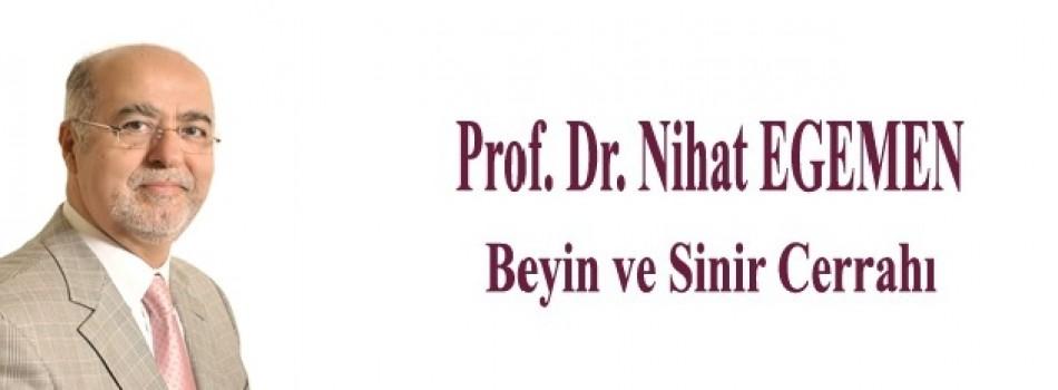 Prof.Dr.Nihat Egemen
